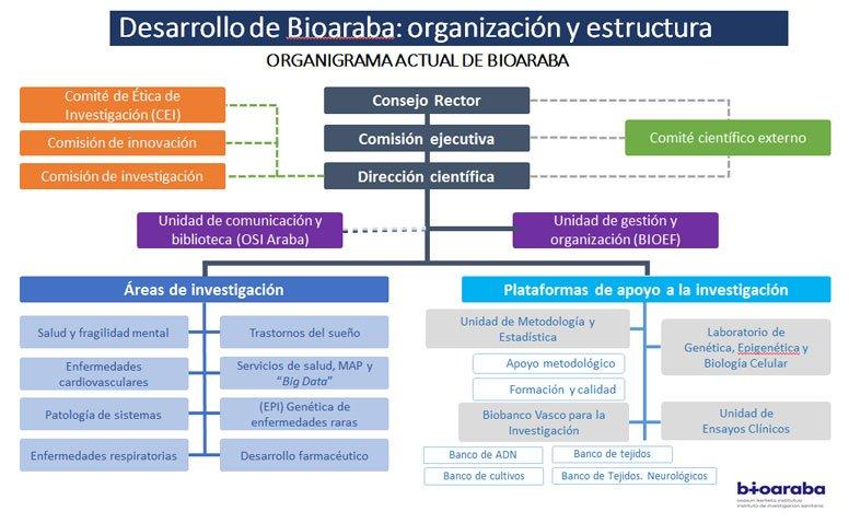 Organigrama Oficial BIOARABA 2018
